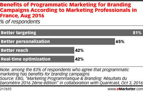 Benefits of Programmatic Marketing for Branding Campaigns According to Marketing Professionals in France, Aug 2016 (% of respondents)