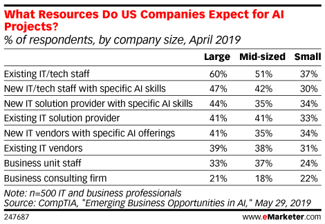 What Resources Do US Companies Expect for AI Projects? (% of respondents, by company size, April 2019)