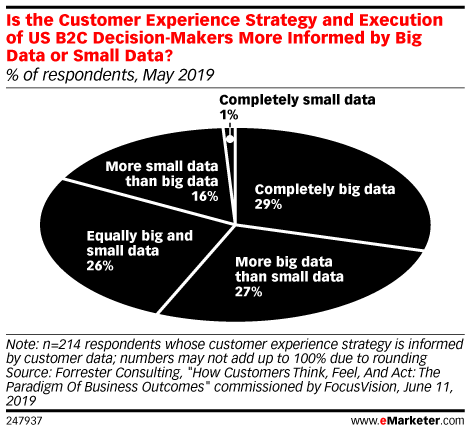 Is the Customer Experience Strategy and Execution of US B2C Decision-Makers More Informed by Big Data or Small Data? (% of respondents, May 2019)